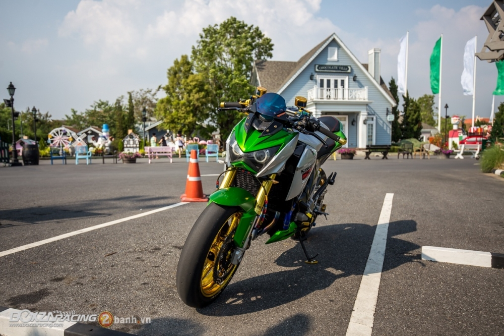 Kawasaki Z800 do day an tuong voi phien ban Green Giant - 3