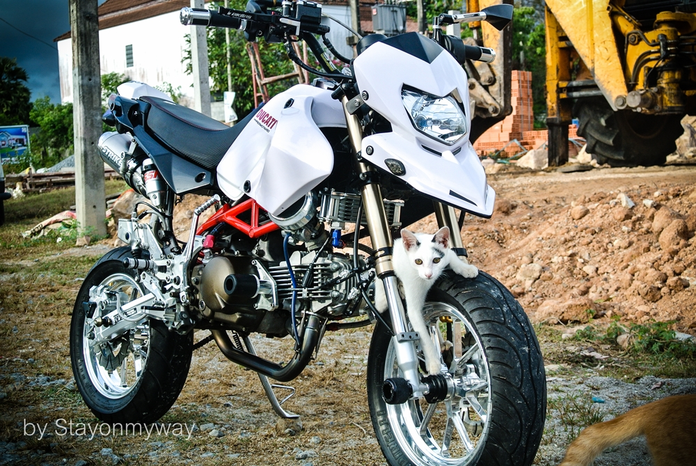Kawasaki KSR do thanh Ducati Hypermotard - 3