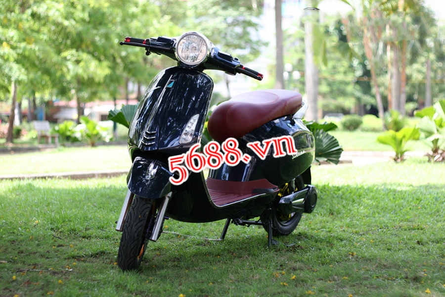 Xe dien sunra vespa ca tinh gia re - 2