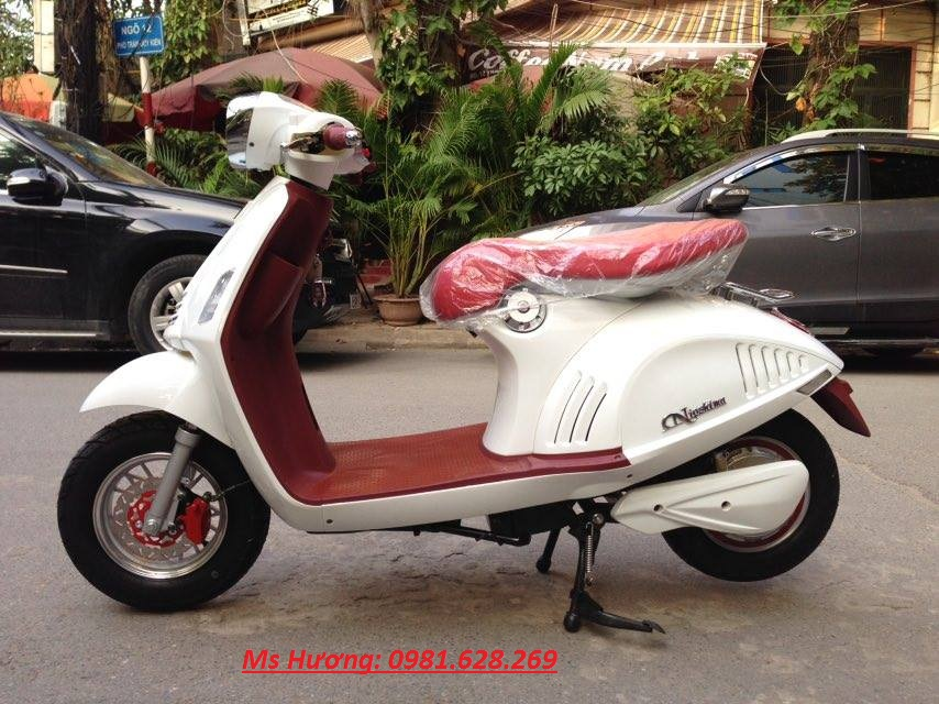Ban Tra Gop Gia Re Chinh Hang Moi Nhat 2016 Giant m133s Nijia Vespa Zoomer - 3
