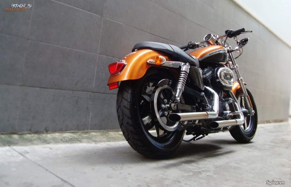 ___ Can Ban___HARLEY DAVIDSON Custom 1200 CA 2014 ABS___ - 5