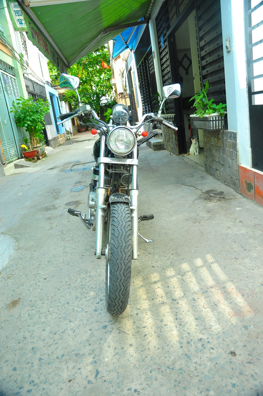 HCM Can ban Honda Rebel 250 HQCN 2009 - 5