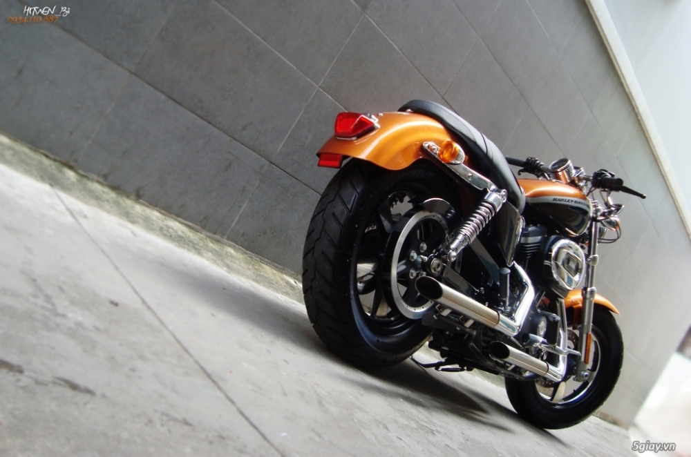 ___ Can Ban___HARLEY DAVIDSON Custom 1200 CA 2014 ABS___ - 8