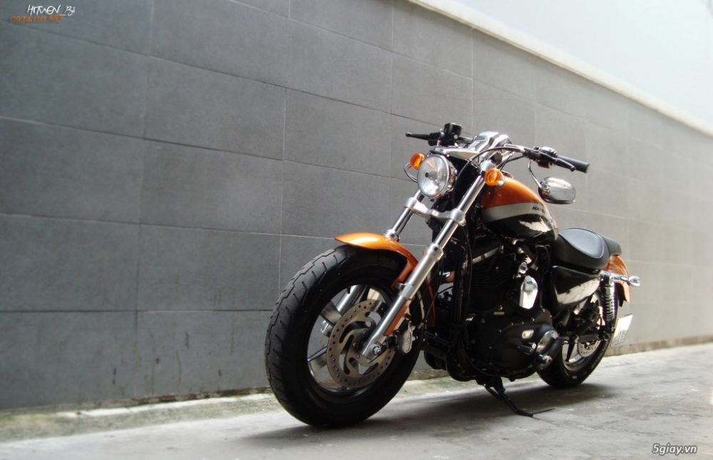 ___ Can Ban___HARLEY DAVIDSON Custom 1200 CA 2014 ABS___ - 4