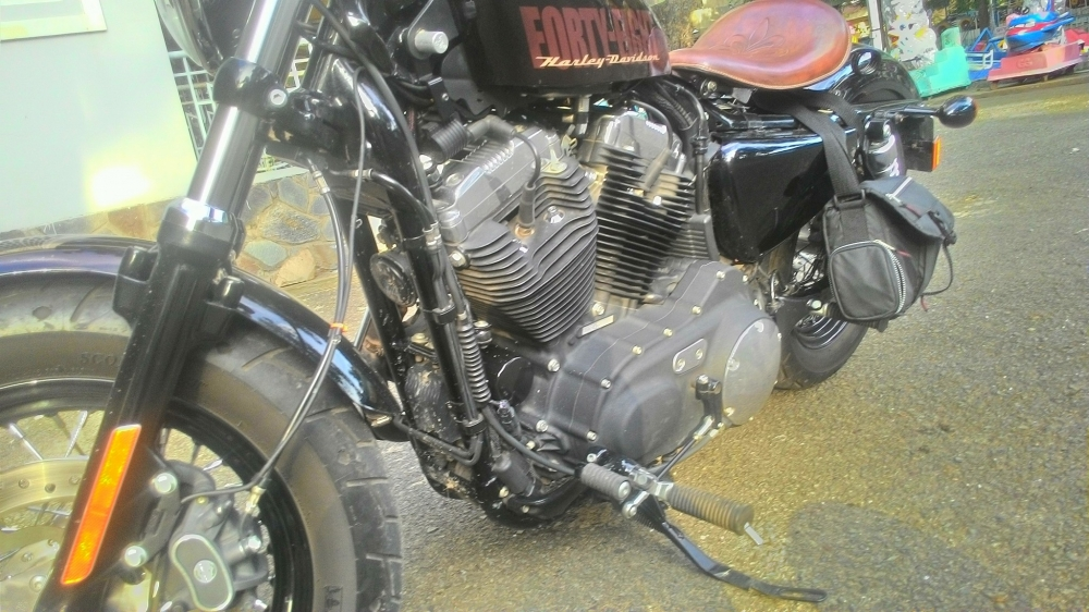 Harley Davidson Forty Eyght 2015 ABS - 5