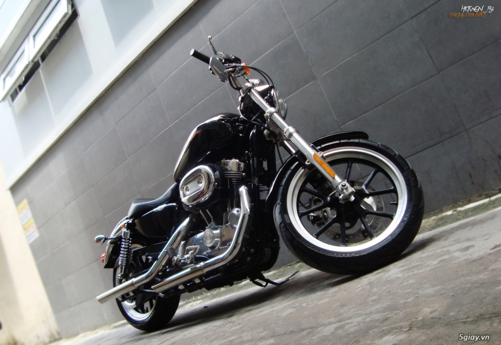 ___ Can Ban ___HARLEY DAVIDSON 883 Superlow 2014___ - 5