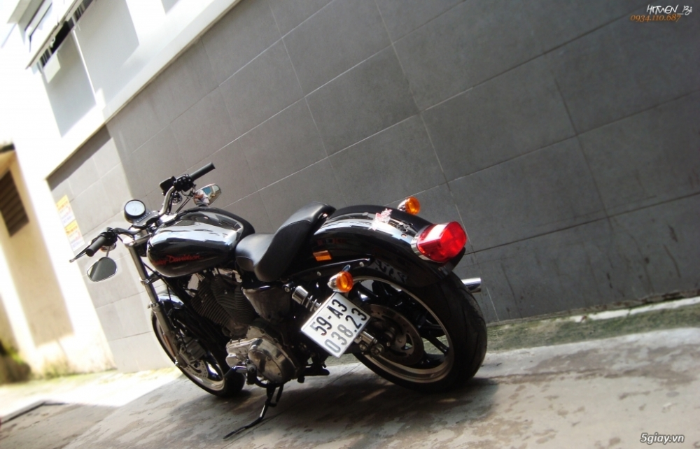 ___ Can Ban ___HARLEY DAVIDSON 883 Superlow 2014___ - 2