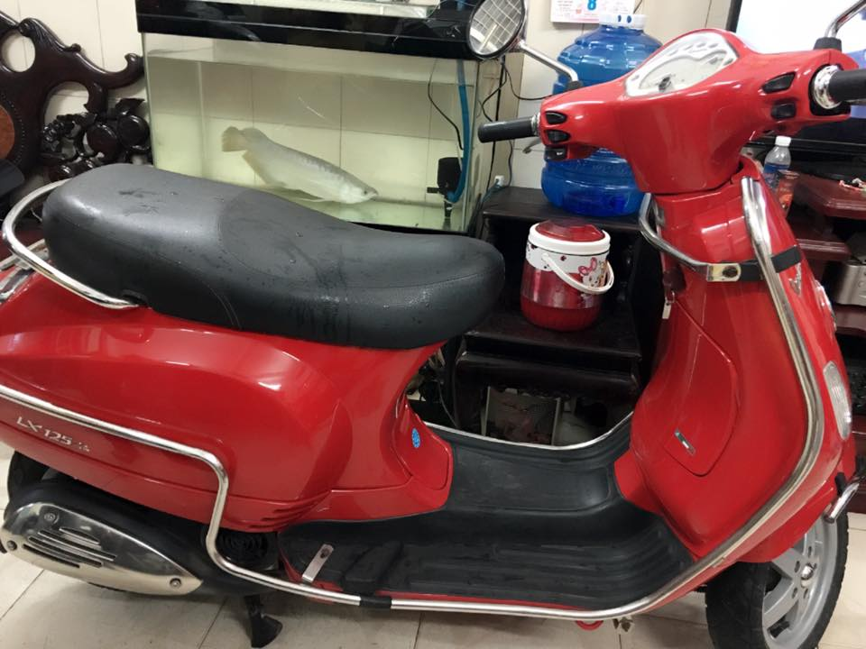 Vespa Lx 125ie do den chinh chu bstp 57989