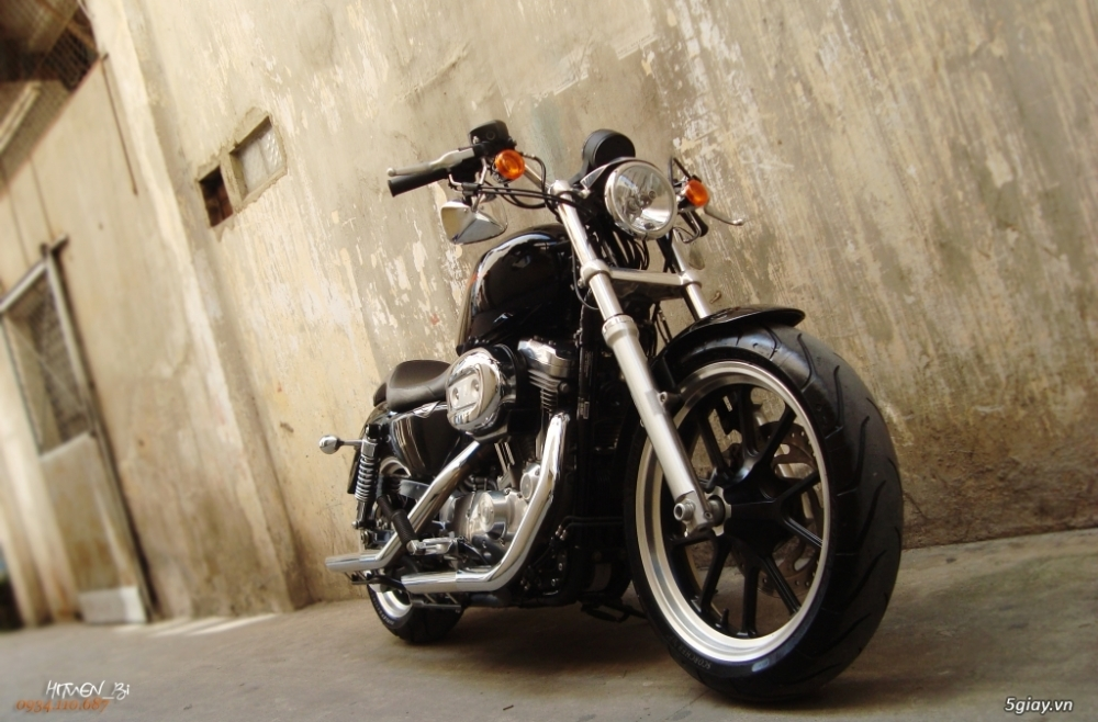 ___ Can Ban ___HARLEY DAVIDSON 883 Superlow 2014 ABS___