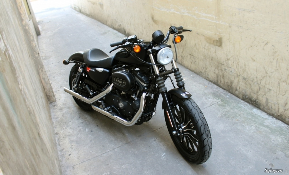 ___ Can Ban ___HARLEY DAVIDSON 883 Iron ABS 2016___ - 3